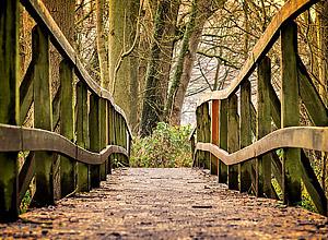 Caminhe por rotas distintas